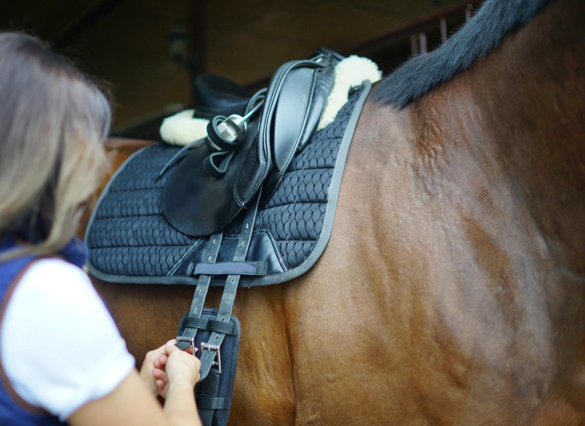 une selle sur un cheval