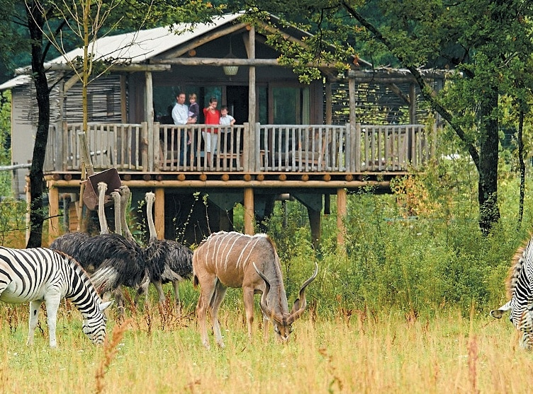Parc Animalier de l'Allier