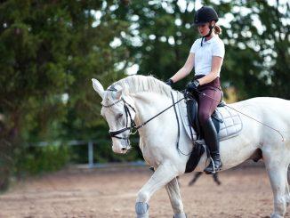 une femme sur un cheval
